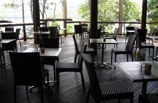 Restaurant Chairs, Palm Rattan Chairs 002