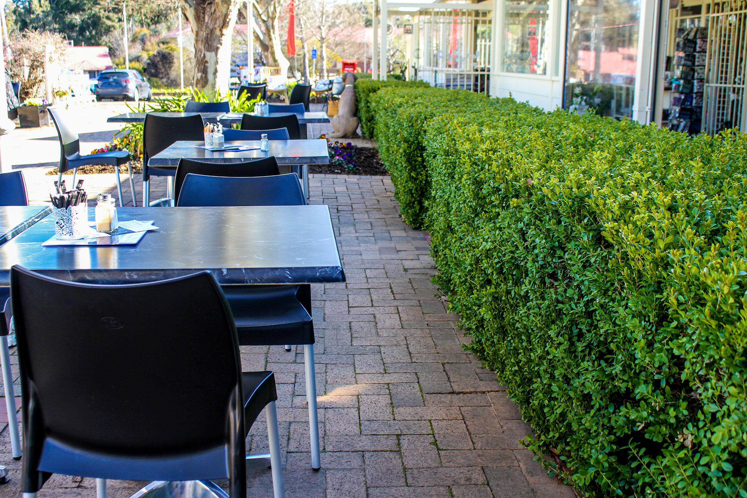 Name : The Hungry Bird Cafe - Canberra