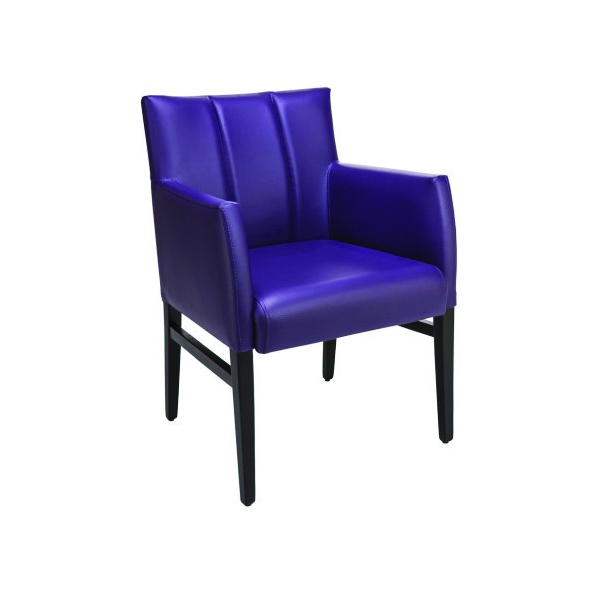 Milan Rail Delux Arm Chair