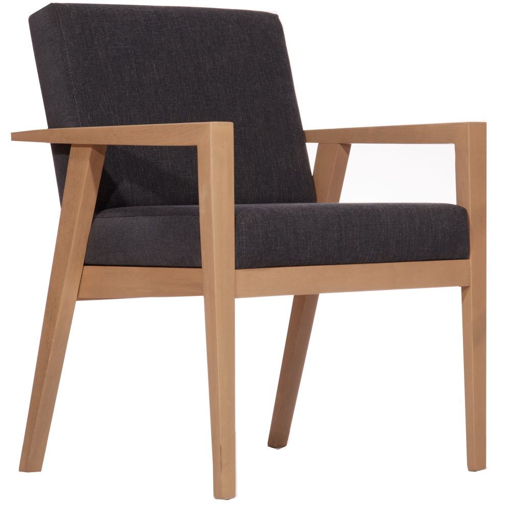 Lucy Arm Lounge Chair